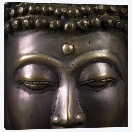 Buddha II Canvas Print #AFR95} by Assaf Frank Canvas Print