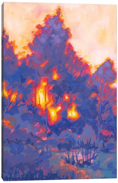 Fiery Sunset Study I Canvas Art Print