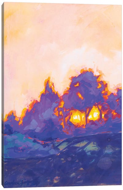 Fiery Sunset Study II Canvas Art Print