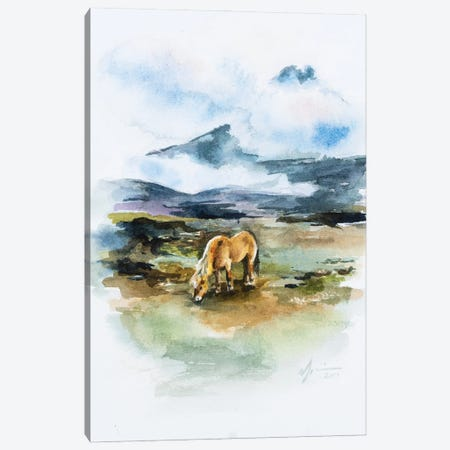 Icelandic Horse Canvas Print #AFS26} by Andrea Fairservice Art Print