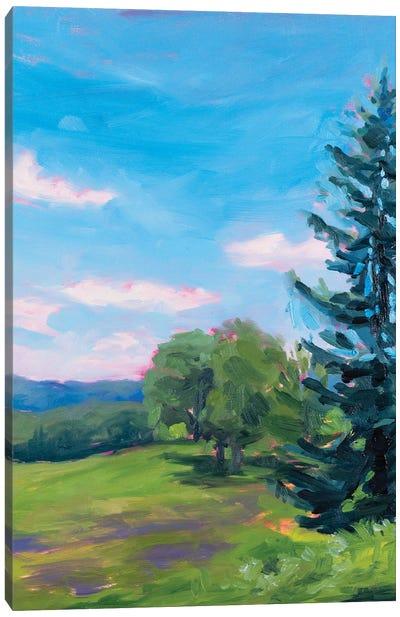 Plein Air Study Valley Forge Canvas Art Print