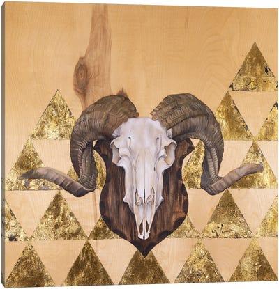Ram Skull Canvas Art Print
