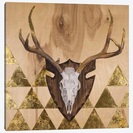 Buck Skull Canvas Print #AFS5} by Andrea Fairservice Art Print