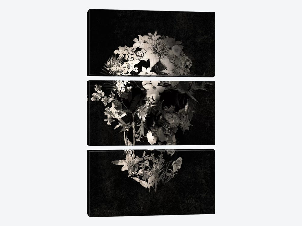 Spring Skull by Ali Gulec 3-piece Canvas Artwork
