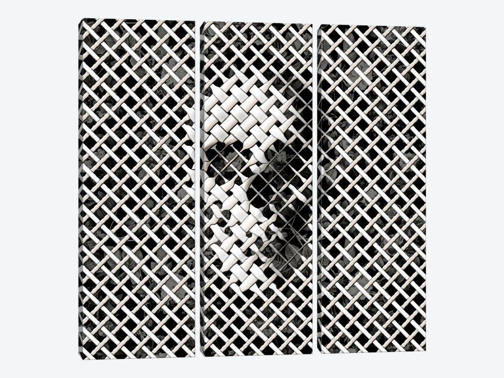 Wicker, Square by Ali Gulec 3-piece Canvas Print