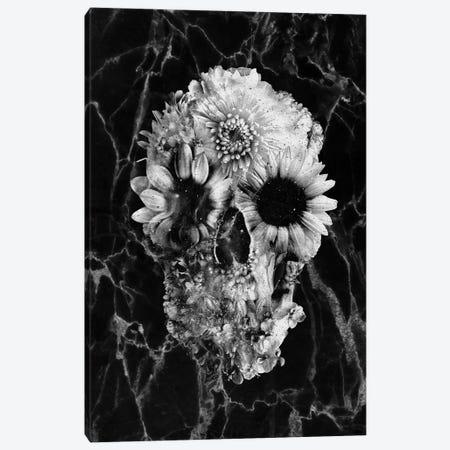Floral Skull II Canvas Print #AGC108} by Ali Gulec Art Print