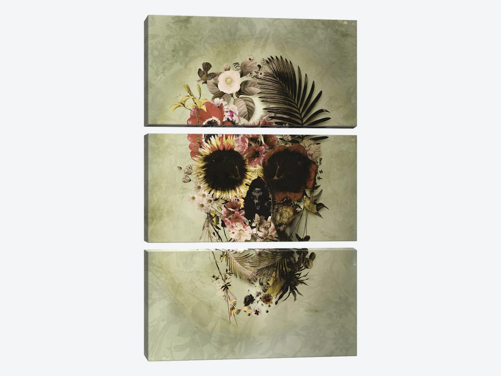 Garden Skull Light by Ali Gulec 3-piece Art Print