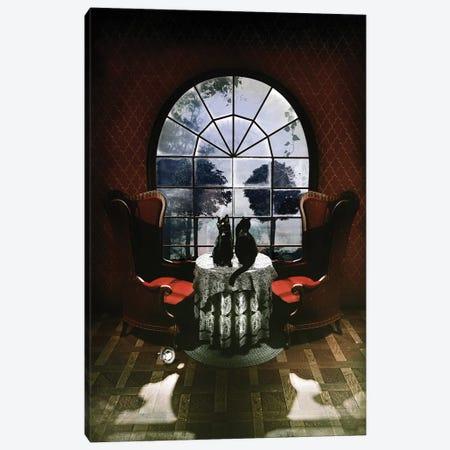 Room Skull Canvas Print #AGC116} by Ali Gulec Canvas Print