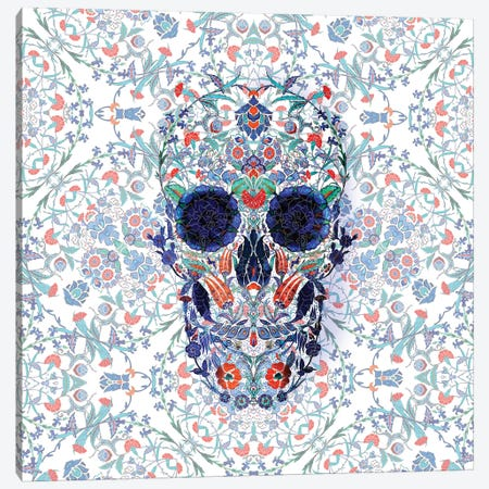 Chini Skull Canvas Print #AGC118} by Ali Gulec Canvas Wall Art