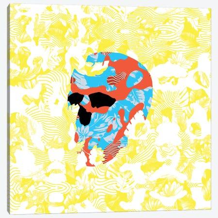 Country Skull Canvas Print #AGC119} by Ali Gulec Canvas Art