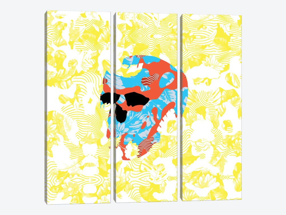 Country Skull by Ali Gulec 3-piece Canvas Wall Art