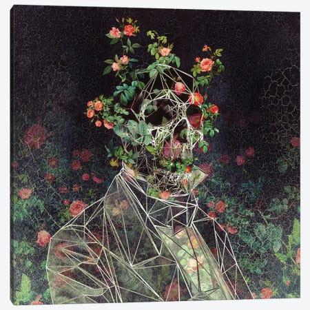 Mr: Cage Canvas Print #AGC120} by Ali Gulec Canvas Art Print