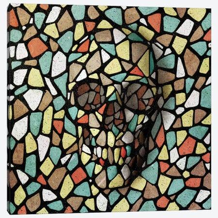 Mosaic Skull Color Canvas Print #AGC126} by Ali Gulec Canvas Art