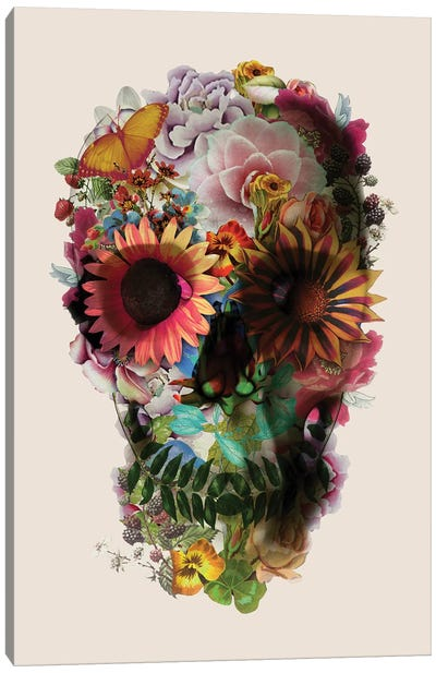 Skull 2 Beige Canvas Art Print