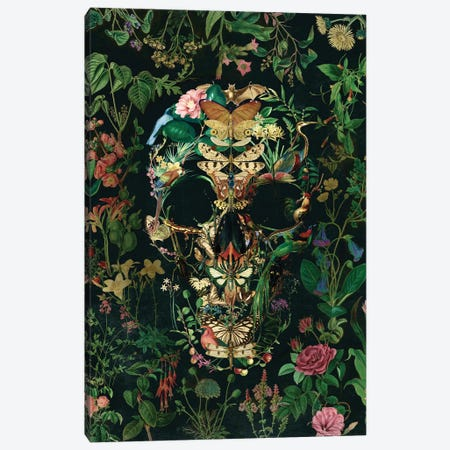 Papillion Skull Portrait Canvas Print #AGC138} by Ali Gulec Canvas Art