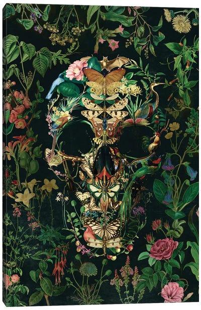 Papillion Skull Portrait Canvas Art Print