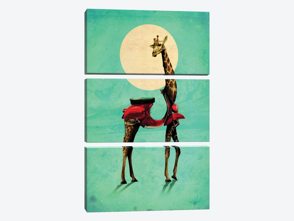 Giraffe Gb #2 by Ali Gulec 3-piece Canvas Artwork