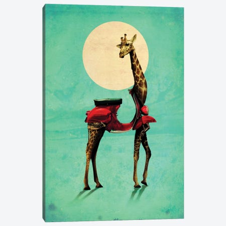 Giraffe Gb #2 Canvas Print #AGC13} by Ali Gulec Canvas Artwork