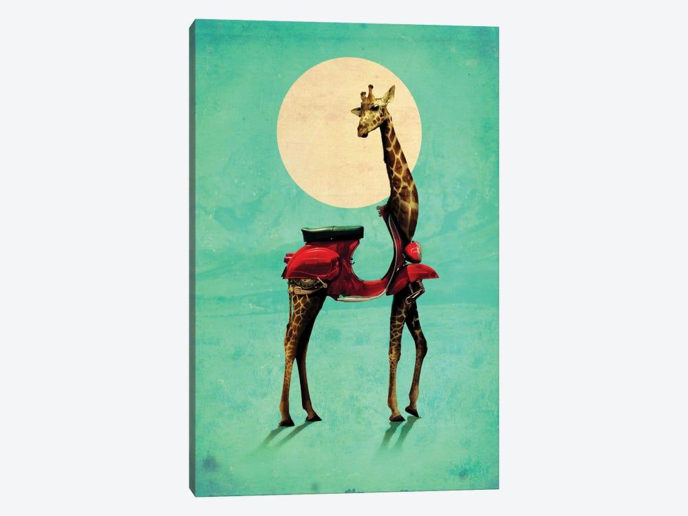 Giraffe Gb #2 by Ali Gulec 1-piece Canvas Art