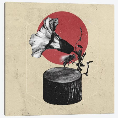 Gramophone Canvas Print #AGC14} by Ali Gulec Canvas Print