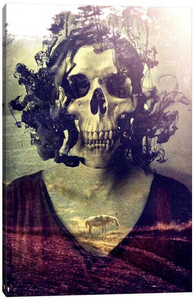 Miss Skull Canvas Art Print