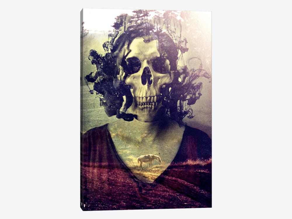 Miss Skull by Ali Gulec 1-piece Canvas Art
