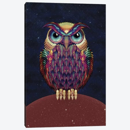 Owl #2 Canvas Print #AGC26} by Ali Gulec Canvas Artwork