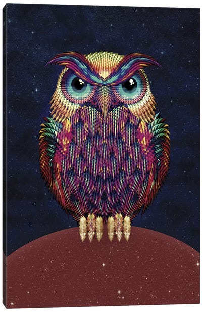 Owl #2 Canvas Art Print