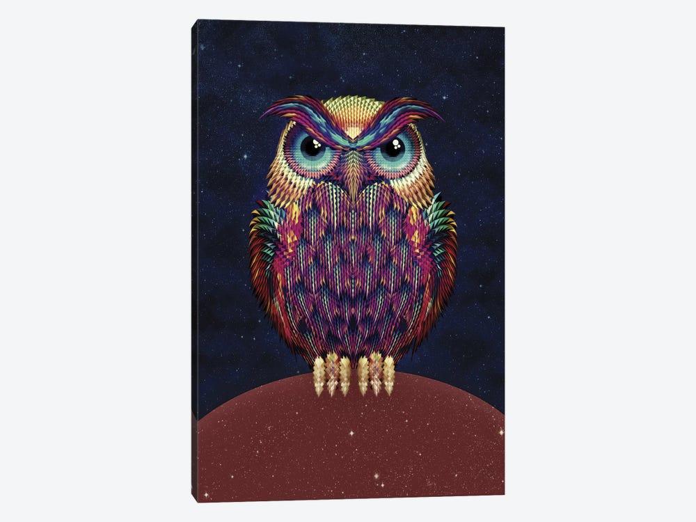 Owl #2 by Ali Gulec 1-piece Canvas Art