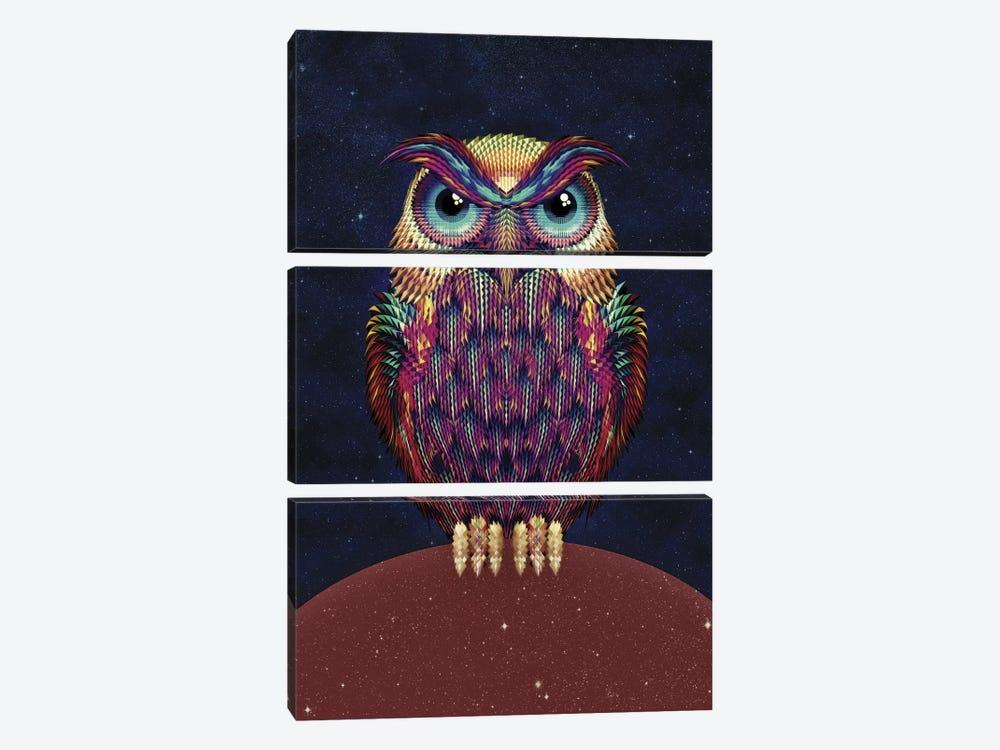 Owl #2 by Ali Gulec 3-piece Canvas Art