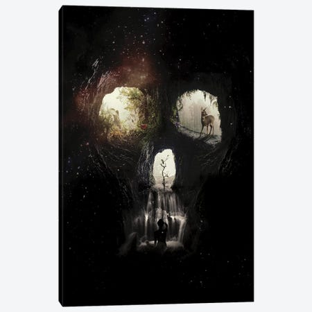 Cave Skull Canvas Print #AGC2} by Ali Gulec Canvas Wall Art
