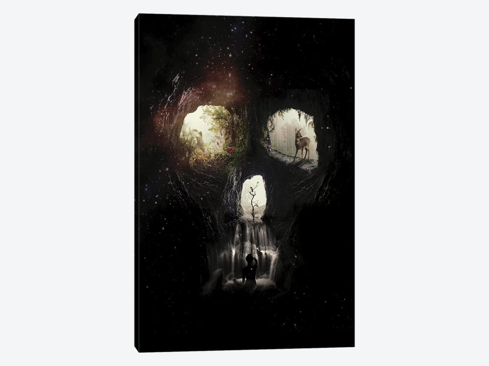 Cave Skull by Ali Gulec 1-piece Canvas Print