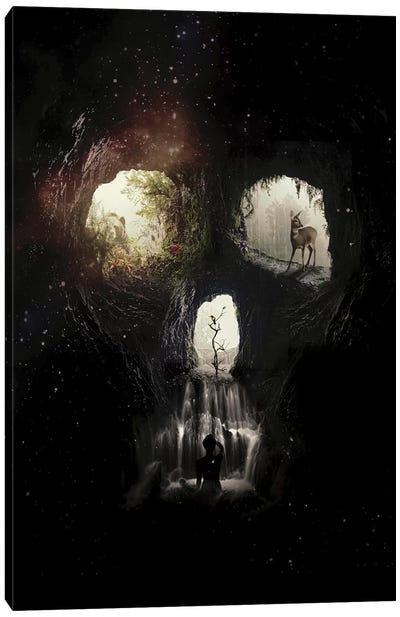 Cave Skull Canvas Art Print