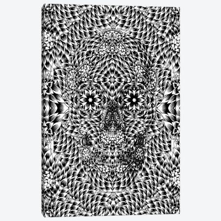 Skull VII Canvas Print #AGC32} by Ali Gulec Canvas Art