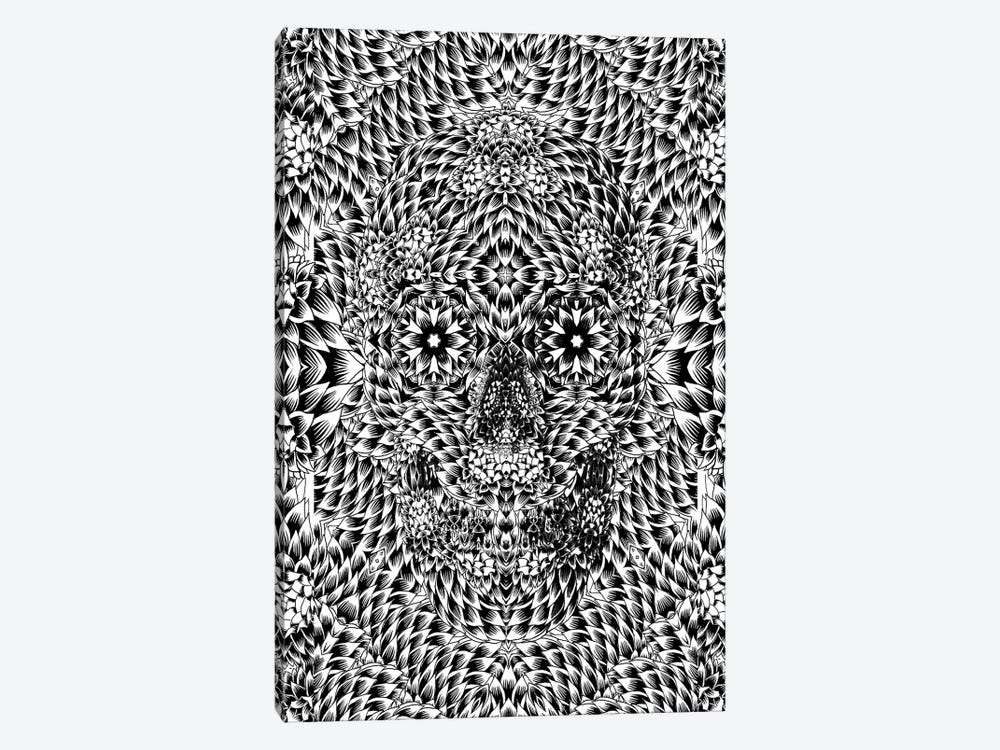 Skull VII by Ali Gulec 1-piece Canvas Print