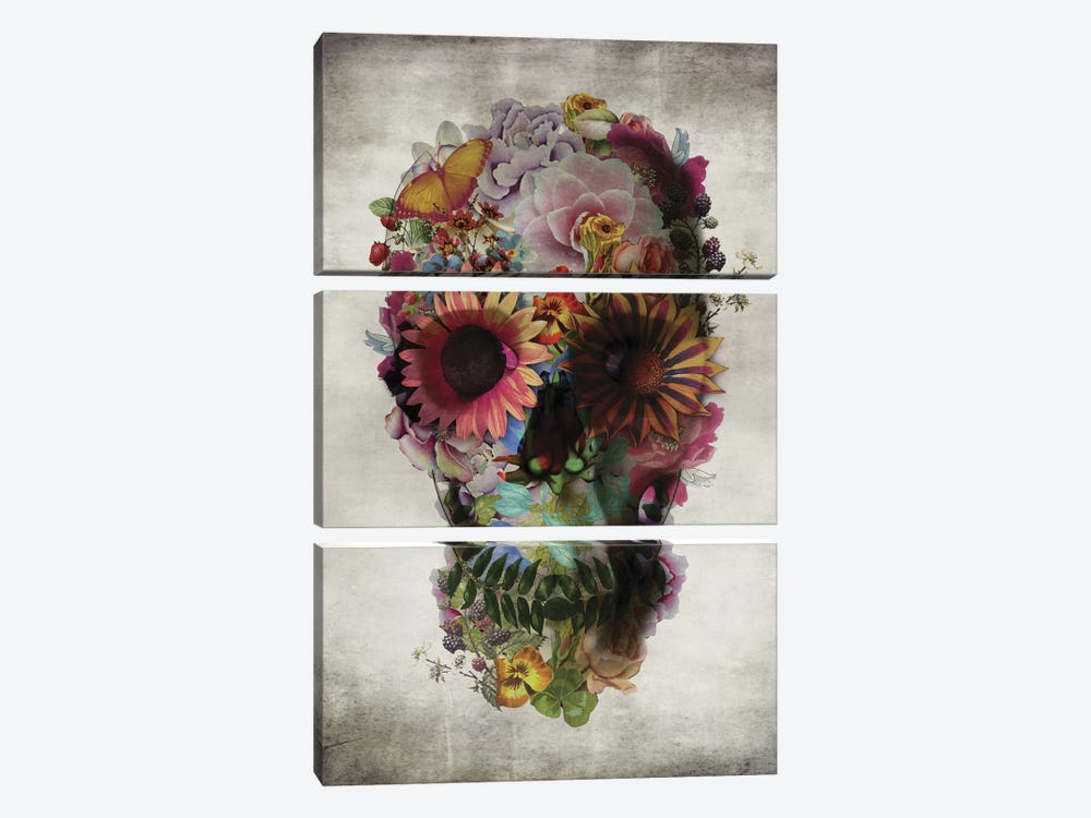 Skull #2 by Ali Gulec 3-piece Canvas Artwork