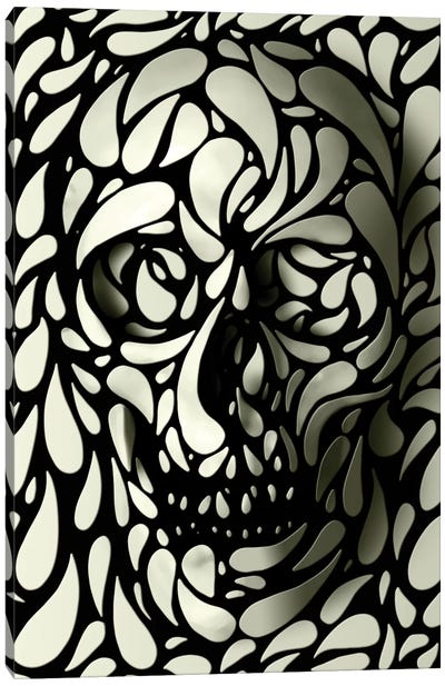 Skull #4 Canvas Art Print