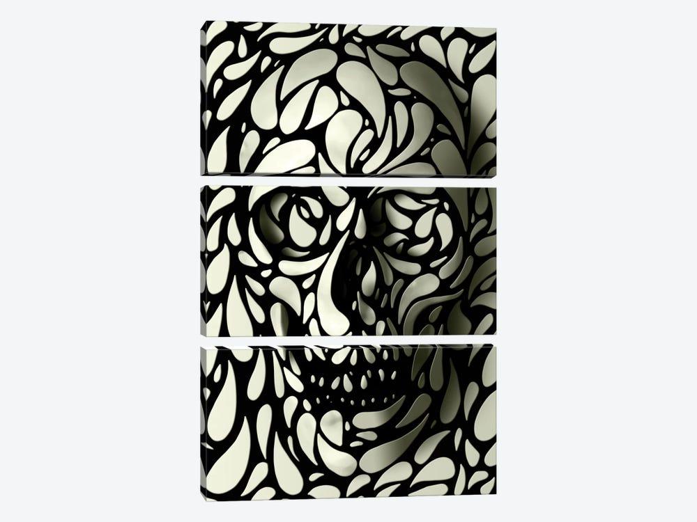 Skull #4 by Ali Gulec 3-piece Canvas Art Print