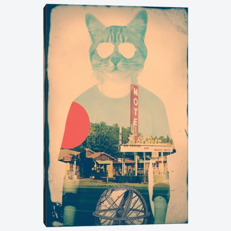Cool Cat Canvas Print #AGC3} by Ali Gulec Canvas Wall Art