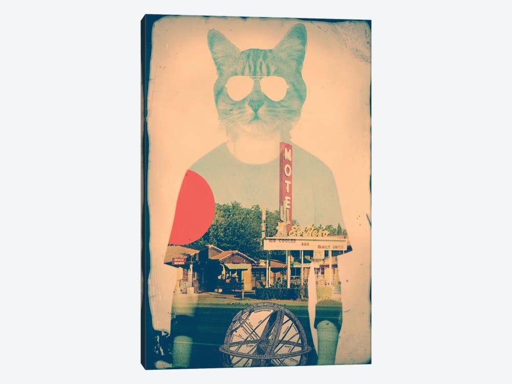 Cool Cat by Ali Gulec 1-piece Canvas Art