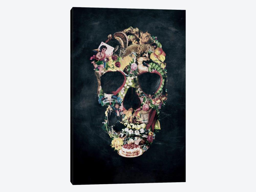 Vintage Skull by Ali Gulec 1-piece Canvas Artwork