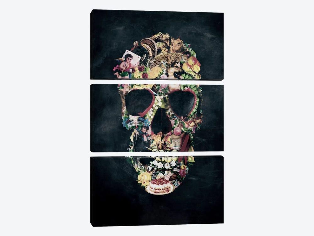 Vintage Skull by Ali Gulec 3-piece Canvas Art