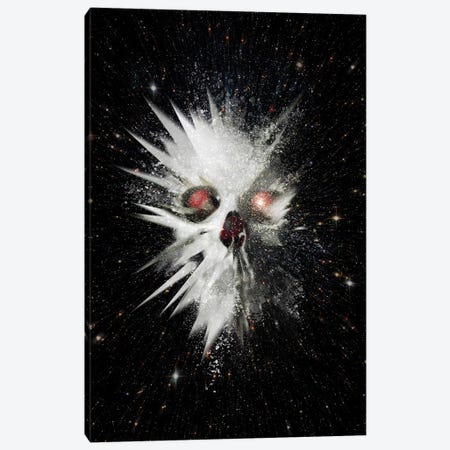 Big Bang Canvas Print #AGC41} by Ali Gulec Art Print