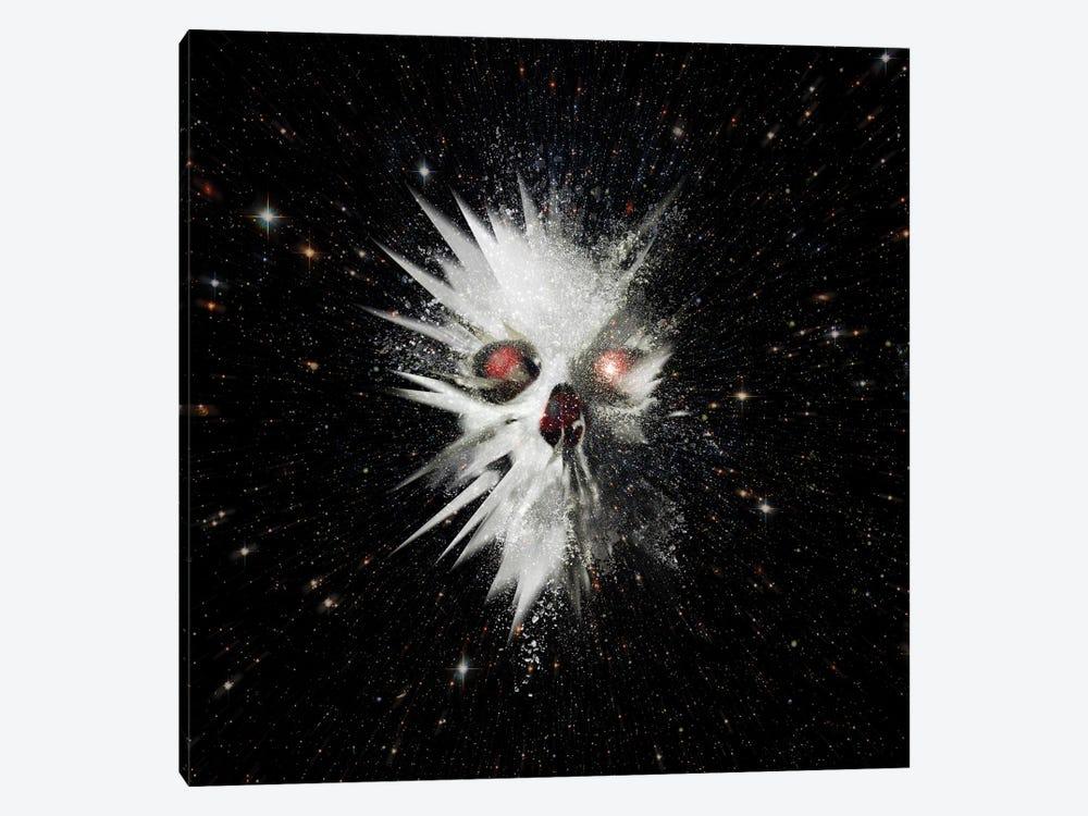Big Bang, Square by Ali Gulec 1-piece Canvas Art