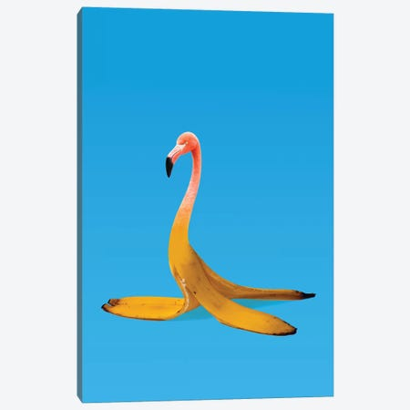 Flamingo Banana Canvas Print #AGC55} by Ali Gulec Canvas Art Print