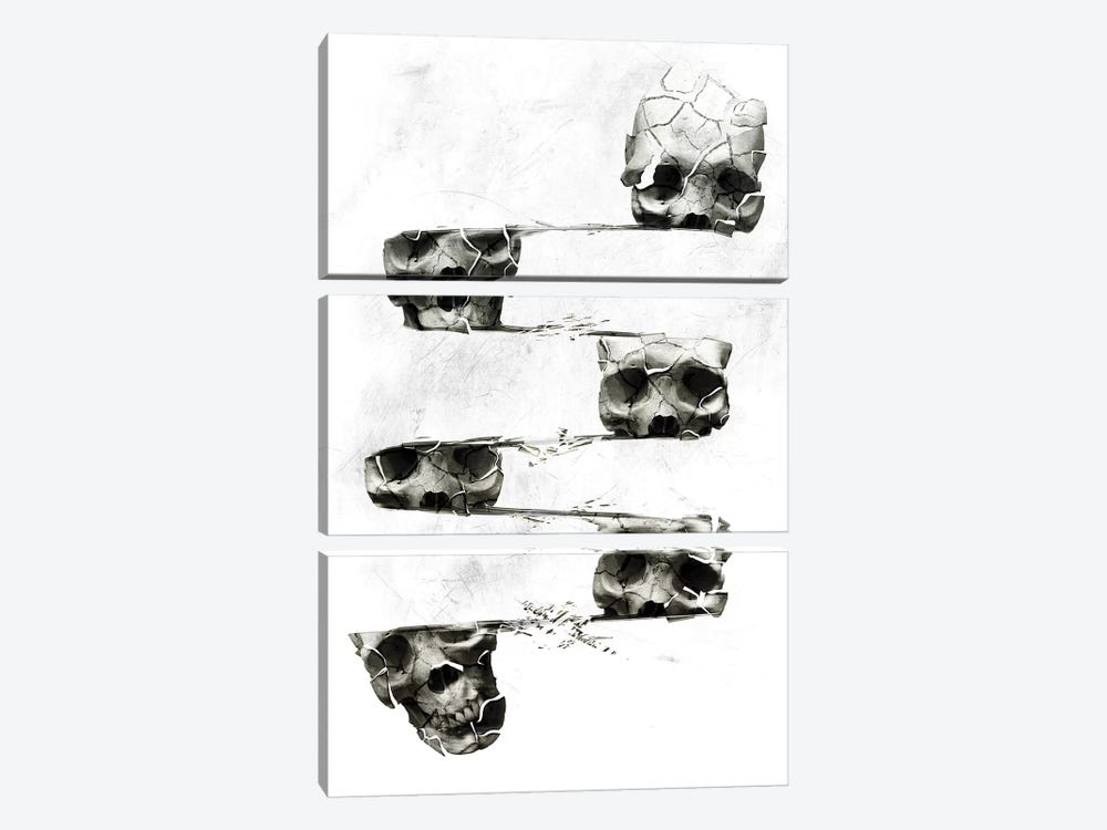 Distorted Skull by Ali Gulec 3-piece Canvas Art