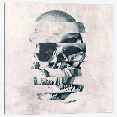 Glitch Skull Mono Canvas Print #AGC62} by Ali Gulec Canvas Art Print