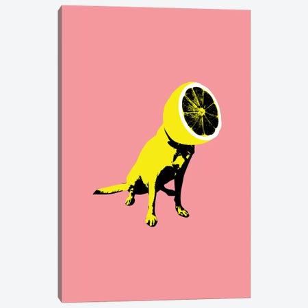 Lemon Canvas Print #AGC68} by Ali Gulec Canvas Print