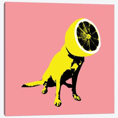 Lemon, Square Canvas Print #AGC69} by Ali Gulec Art Print