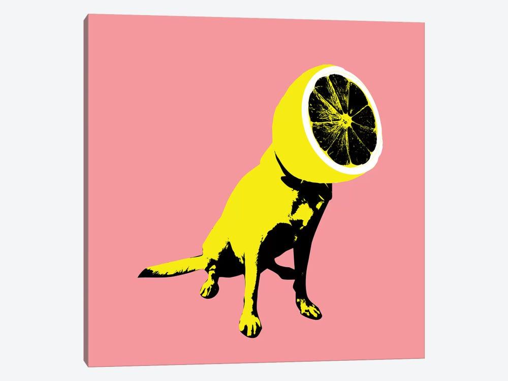 Lemon, Square by Ali Gulec 1-piece Canvas Print